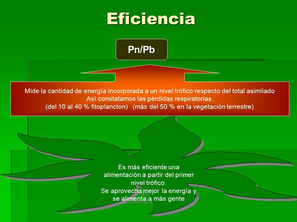 Eficiencia Pn/Pb. Mide la cantidad de energía incorporada a un nivel trófico respecto del total asimilado.