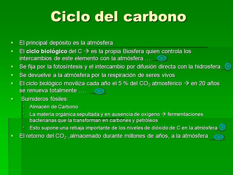 Ciclo del carbono El principal depósito es la atmósfera