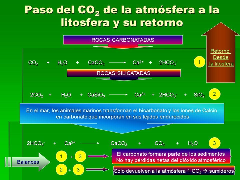 Paso del CO2 de la atmósfera a la litosfera y su retorno
