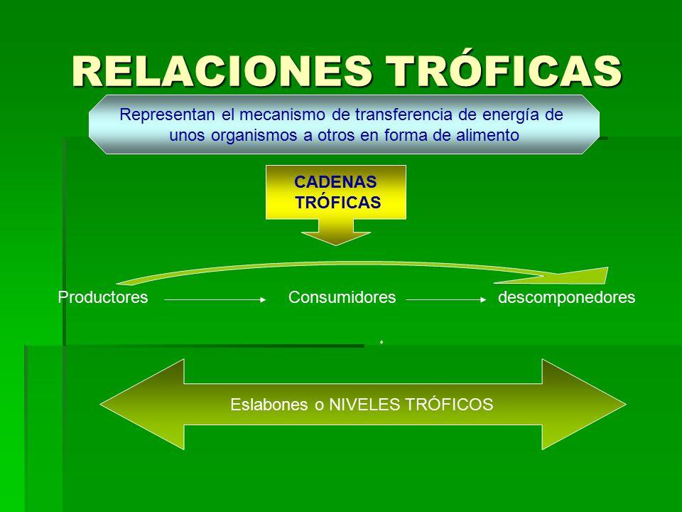 RELACIONES TRÓFICAS Representan el mecanismo de transferencia de energía de. unos organismos a otros en forma de alimento.