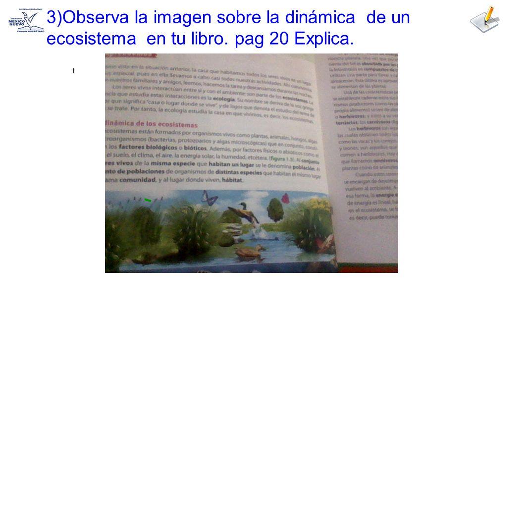 3)Observa la imagen sobre la dinámica de un ecosistema en tu libro