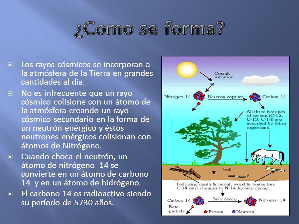 ¿Como se forma Los rayos cósmicos se incorporan a la atmósfera de la Tierra en grandes cantidades al día.