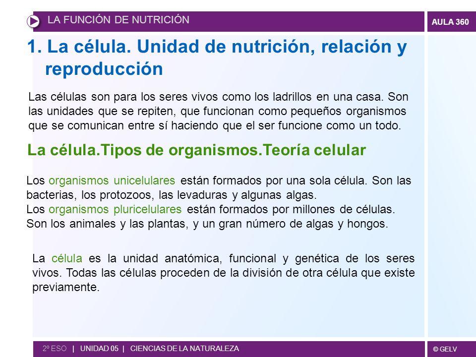 1. La célula. Unidad de nutrición, relación y reproducción
