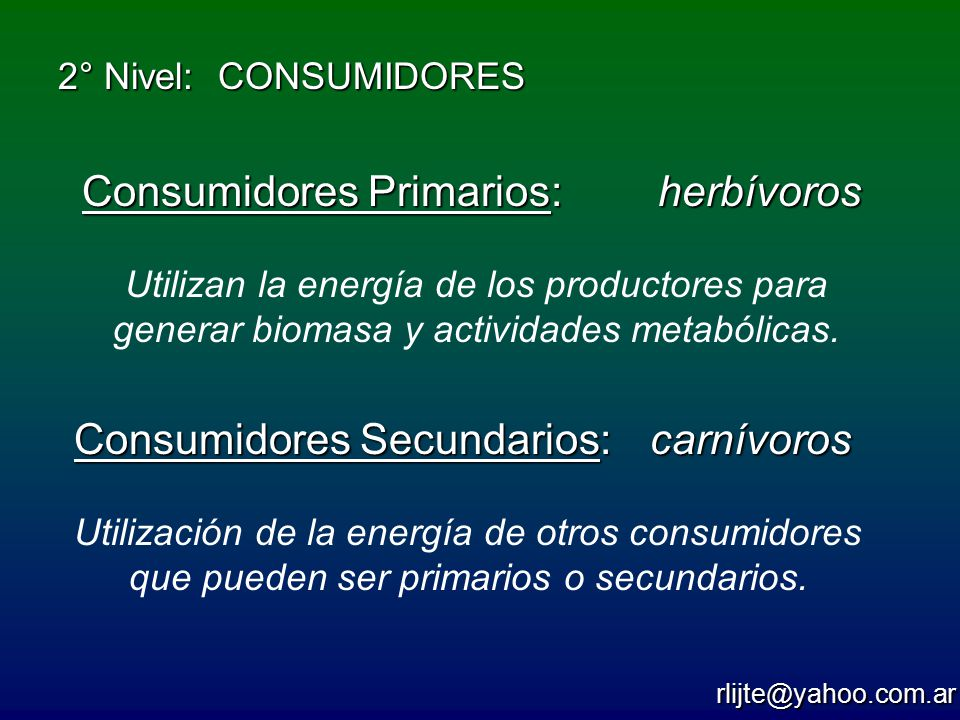 Consumidores Primarios: herbívoros