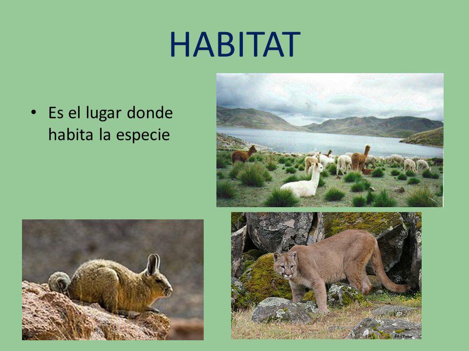 HABITAT Es el lugar donde habita la especie
