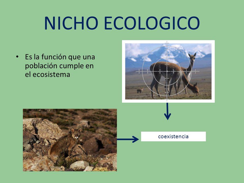 NICHO ECOLOGICO Es la función que una población cumple en el ecosistema coexistencia