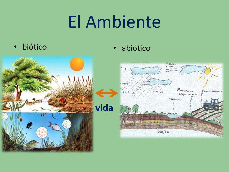 El Ambiente biótico abiótico vida