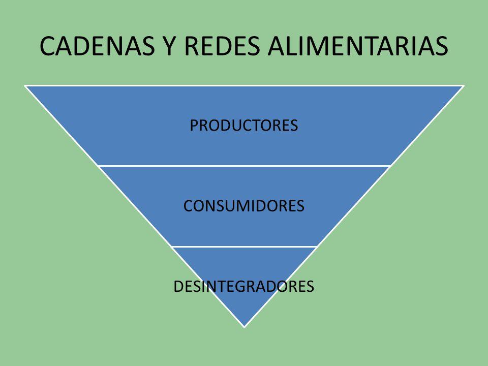 CADENAS Y REDES ALIMENTARIAS