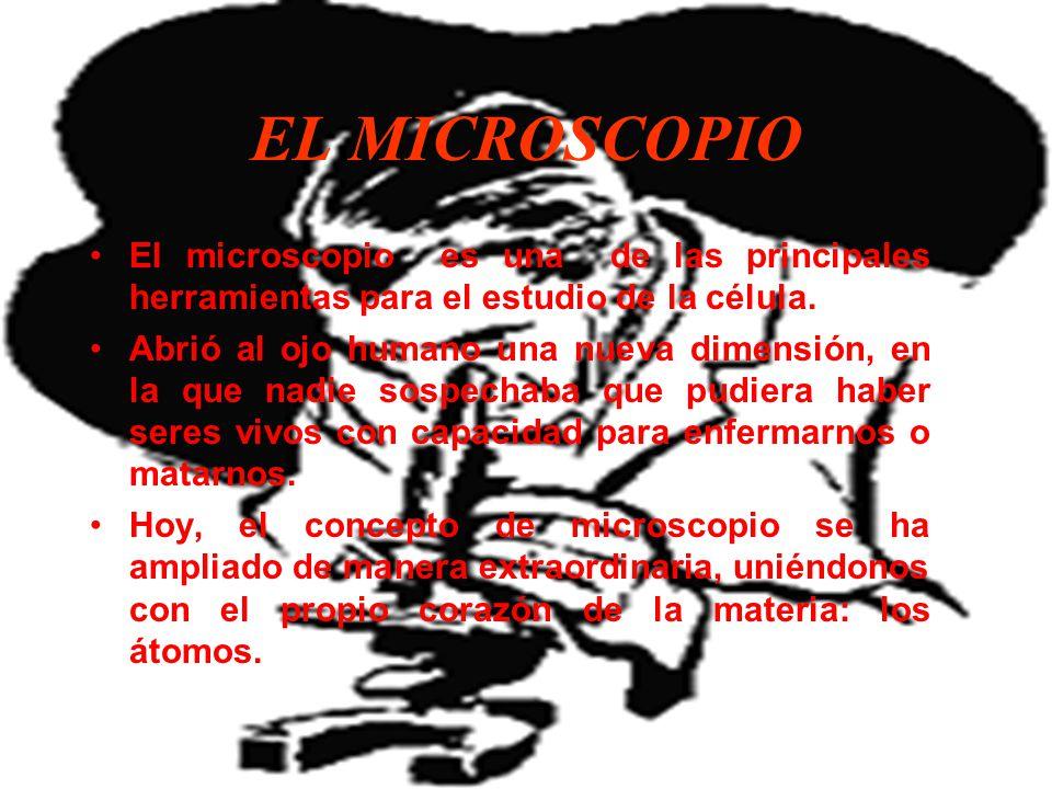 EL MICROSCOPIO El microscopio es una de las principales herramientas para el estudio de la célula.