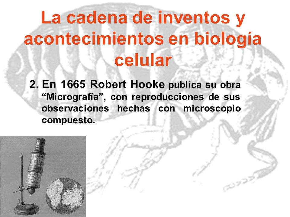 La cadena de inventos y acontecimientos en biología celular