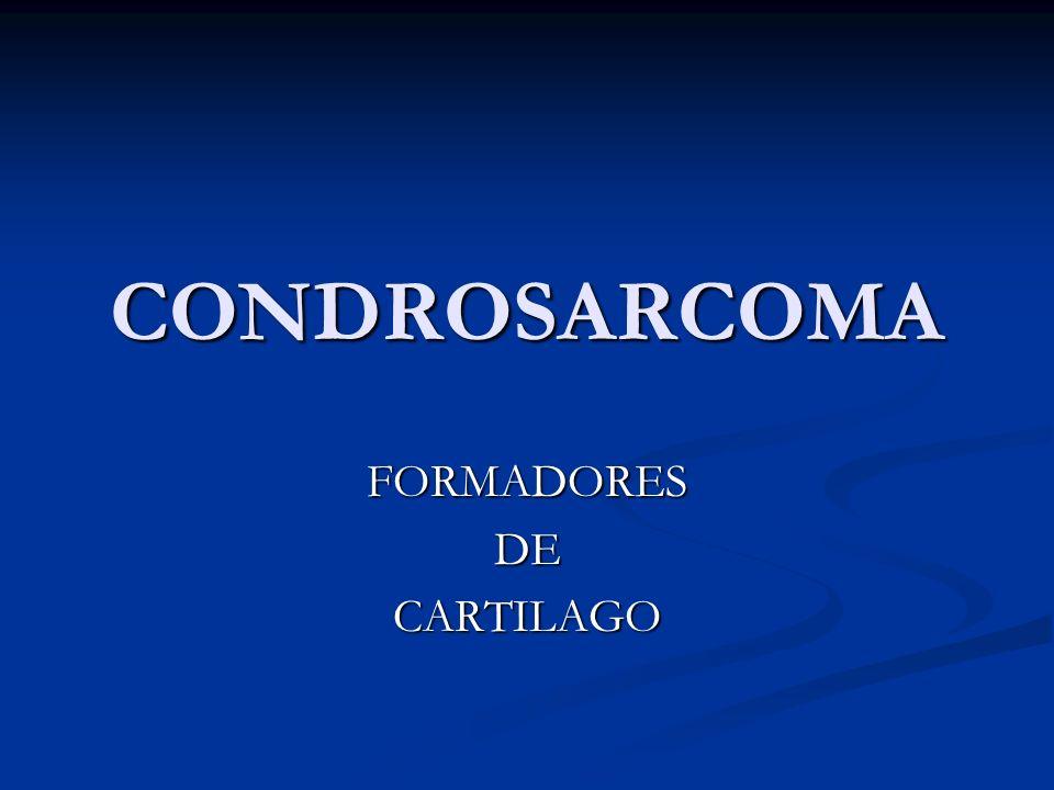 FORMADORES DE CARTILAGO