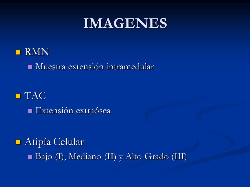 IMAGENES RMN TAC Atipía Celular Muestra extensión intramedular