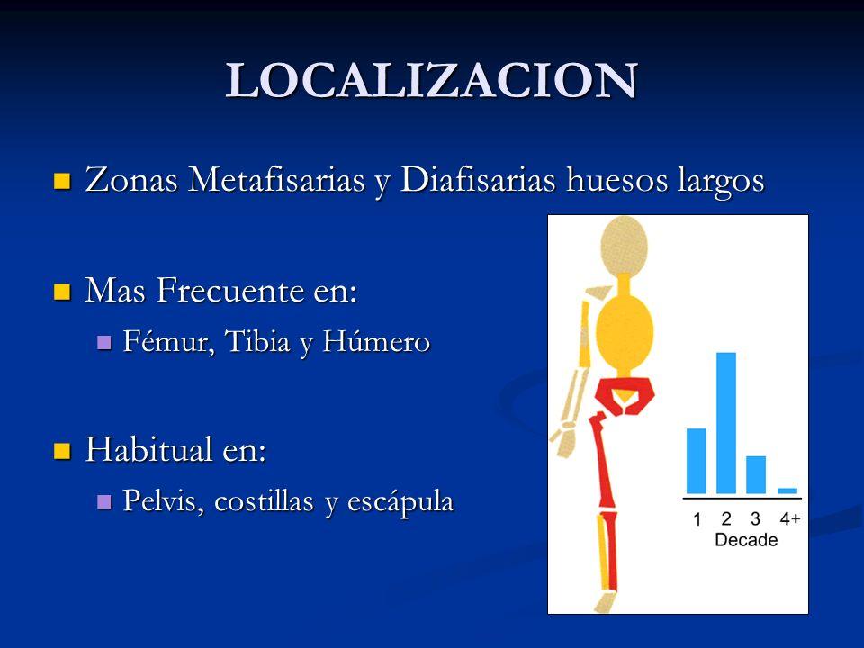 LOCALIZACION Zonas Metafisarias y Diafisarias huesos largos