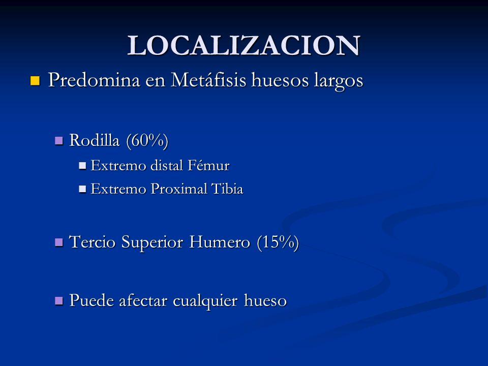 LOCALIZACION Predomina en Metáfisis huesos largos Rodilla (60%)