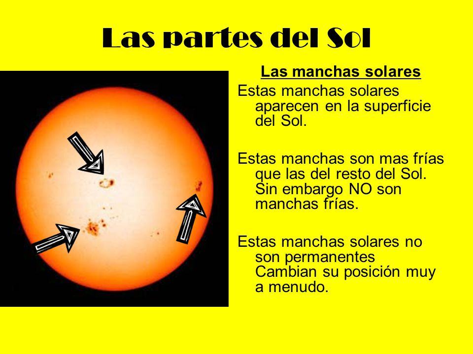Las partes del Sol Las manchas solares