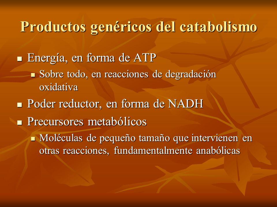 Productos genéricos del catabolismo