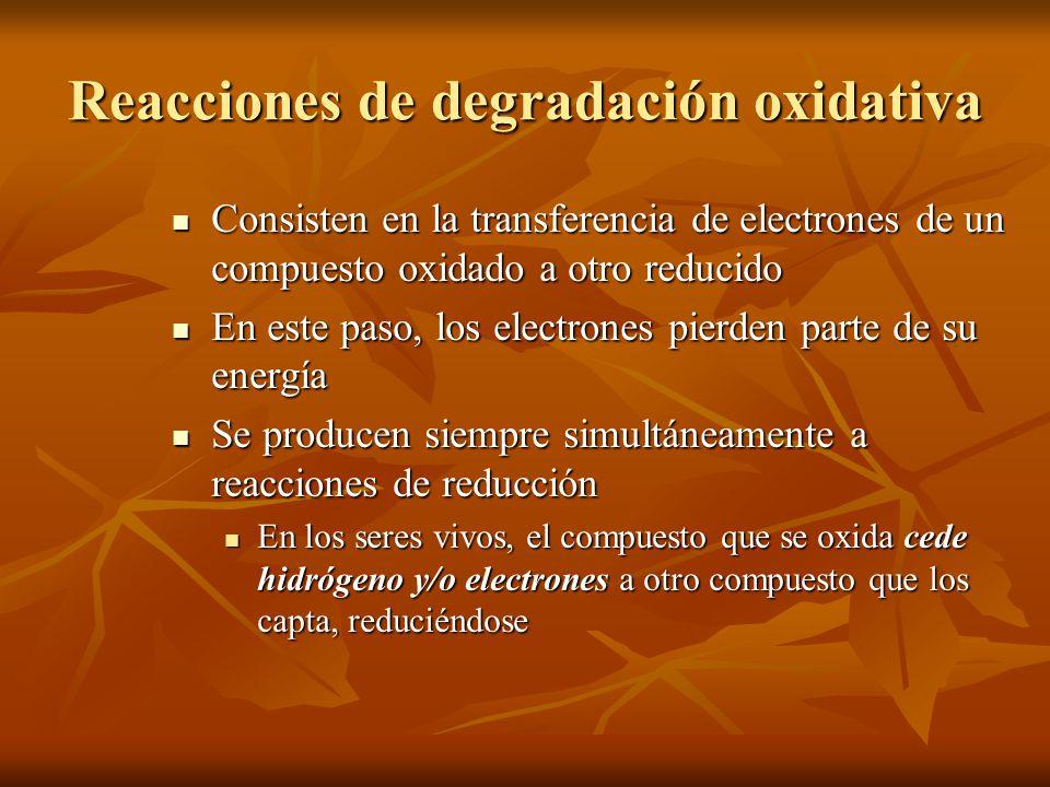 Reacciones de degradación oxidativa