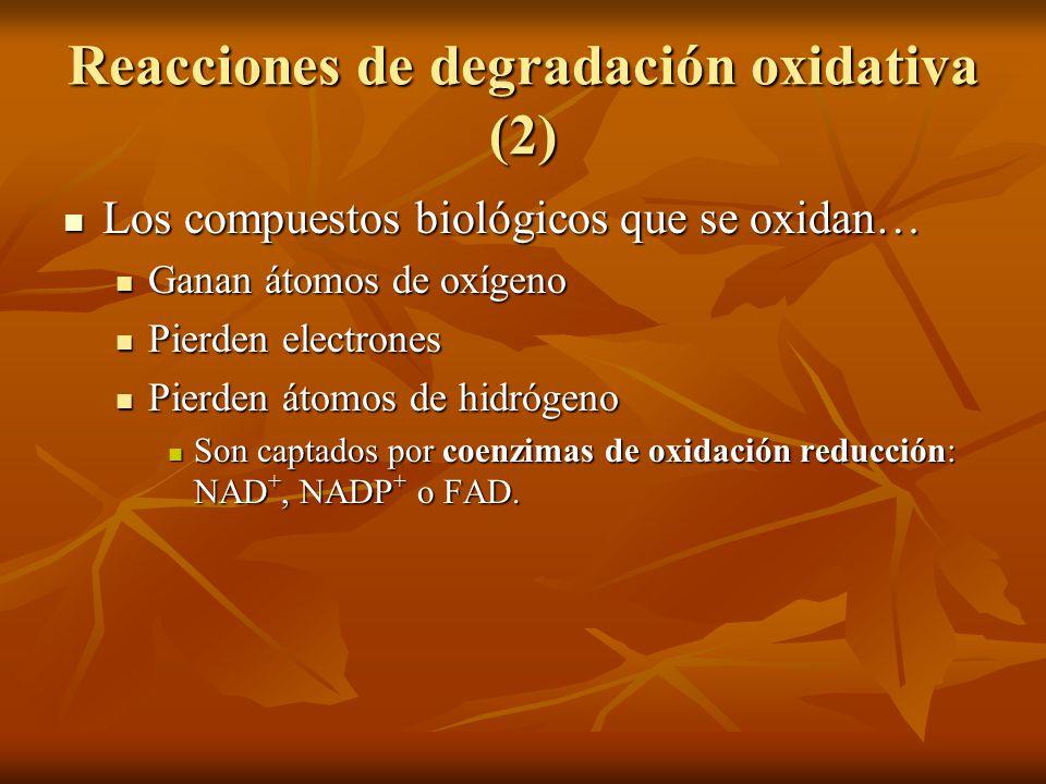 Reacciones de degradación oxidativa (2)