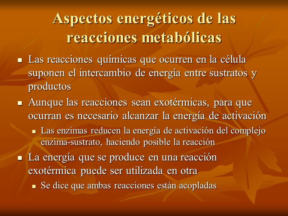Aspectos energéticos de las reacciones metabólicas