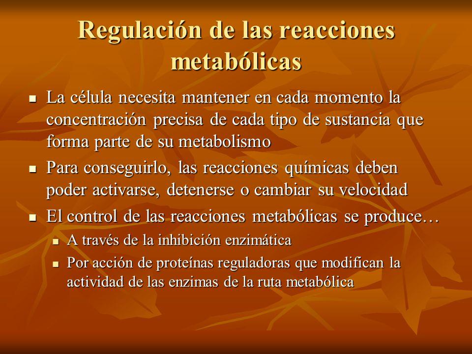 Regulación de las reacciones metabólicas