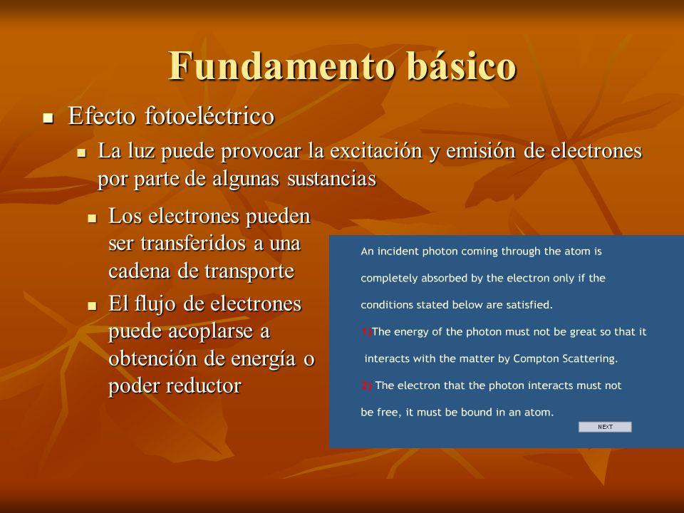 Fundamento básico Efecto fotoeléctrico