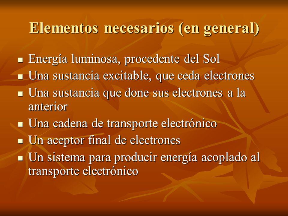 Elementos necesarios (en general)