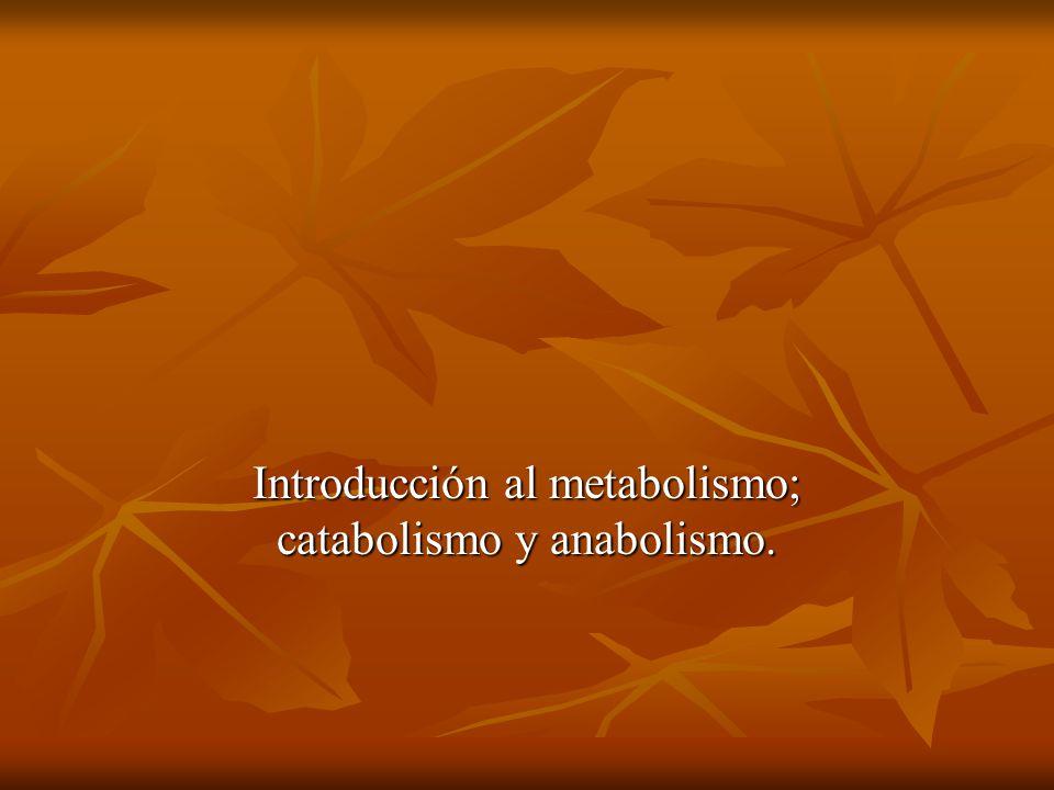 Introducción al metabolismo; catabolismo y anabolismo.