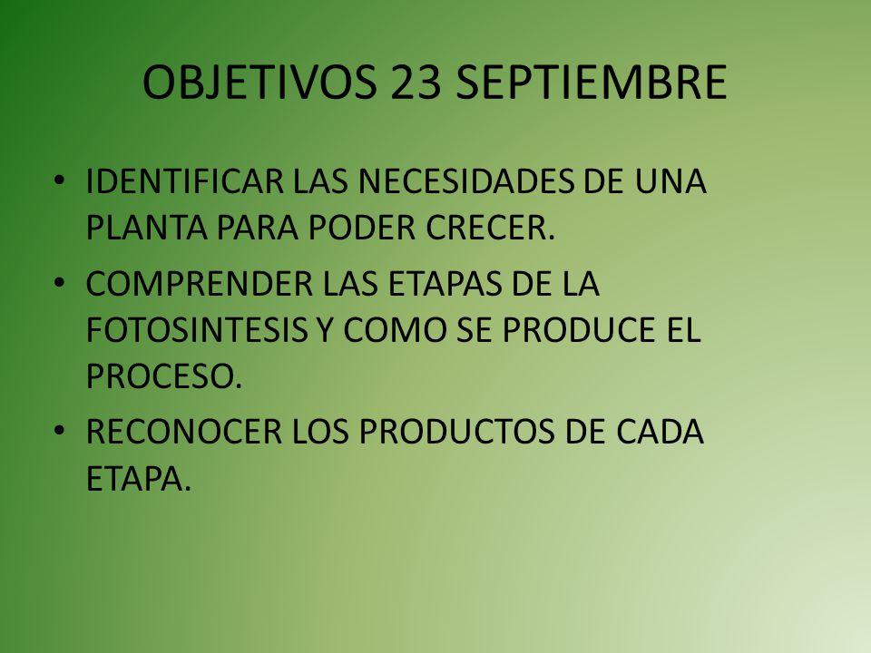 OBJETIVOS 23 SEPTIEMBRE IDENTIFICAR LAS NECESIDADES DE UNA PLANTA PARA PODER CRECER.