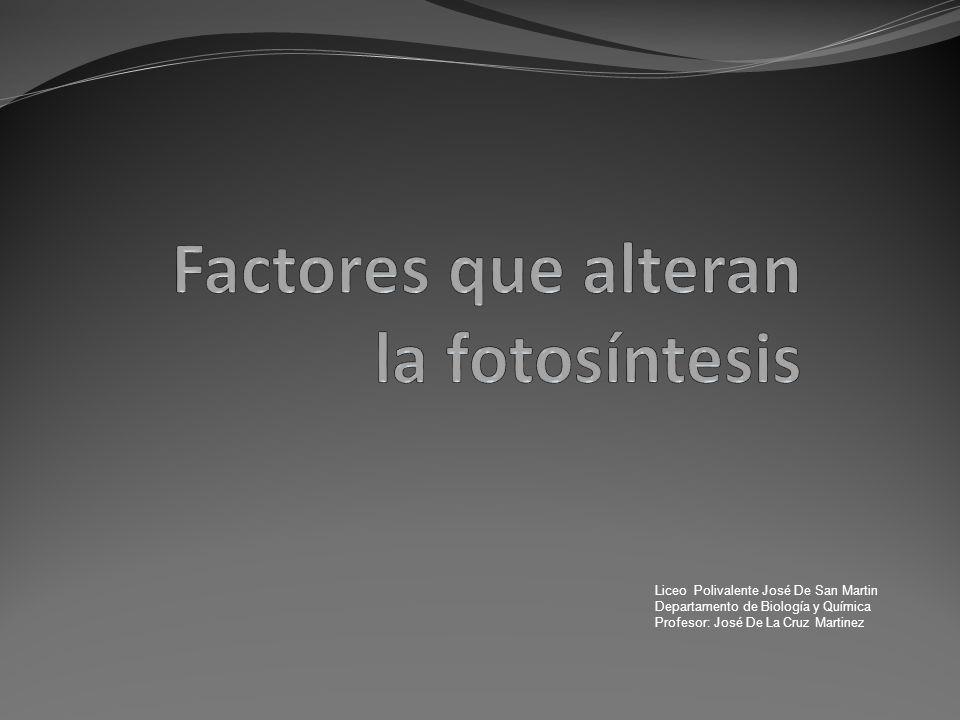 Factores que alteran la fotosíntesis