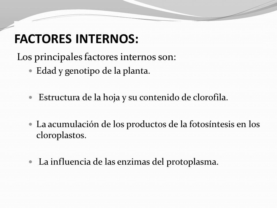 FACTORES INTERNOS: Los principales factores internos son: