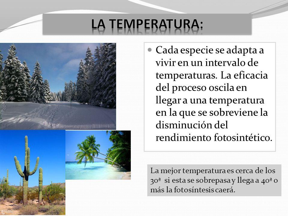 La temperatura: