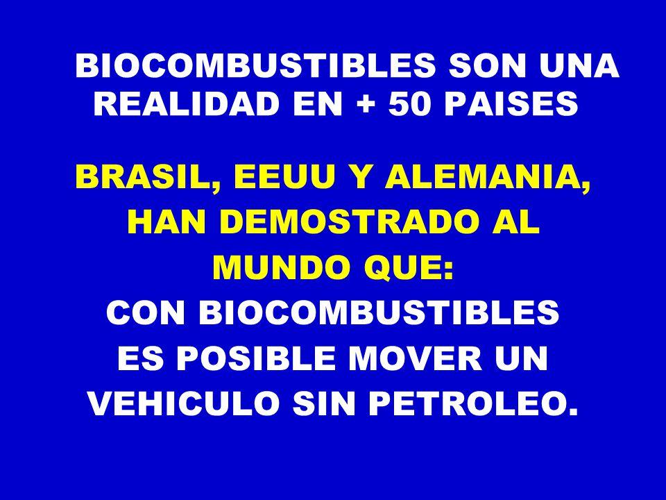 BIOCOMBUSTIBLES SON UNA REALIDAD EN + 50 PAISES