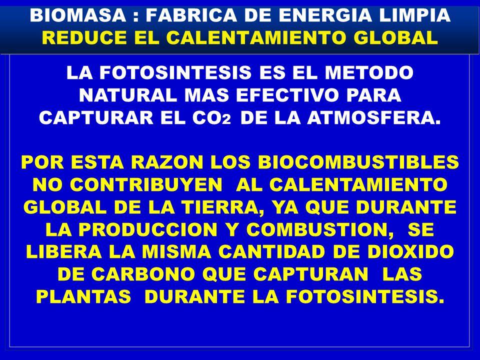 BIOMASA : FABRICA DE ENERGIA LIMPIA REDUCE EL CALENTAMIENTO GLOBAL