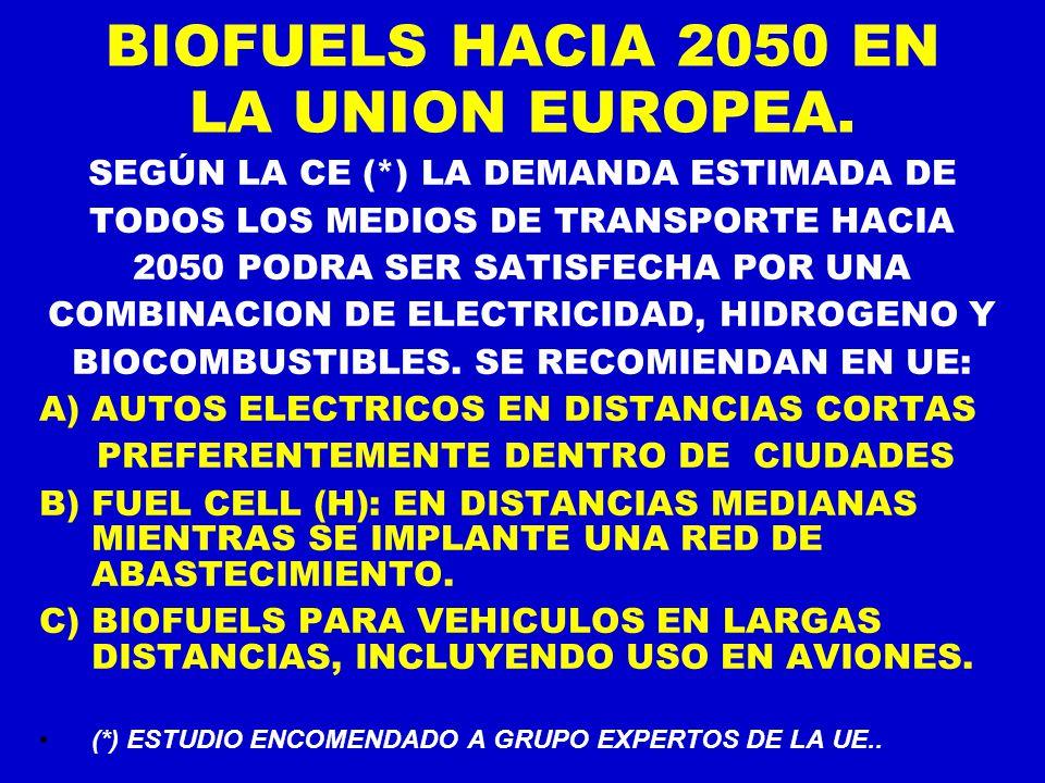 BIOFUELS HACIA 2050 EN LA UNION EUROPEA.