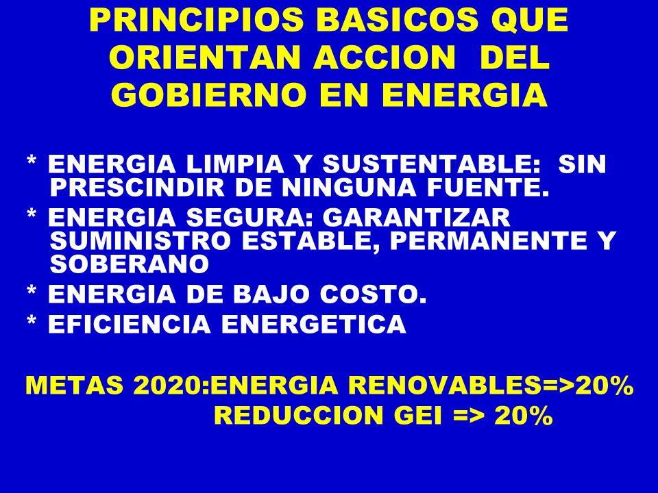 PRINCIPIOS BASICOS QUE ORIENTAN ACCION DEL GOBIERNO EN ENERGIA