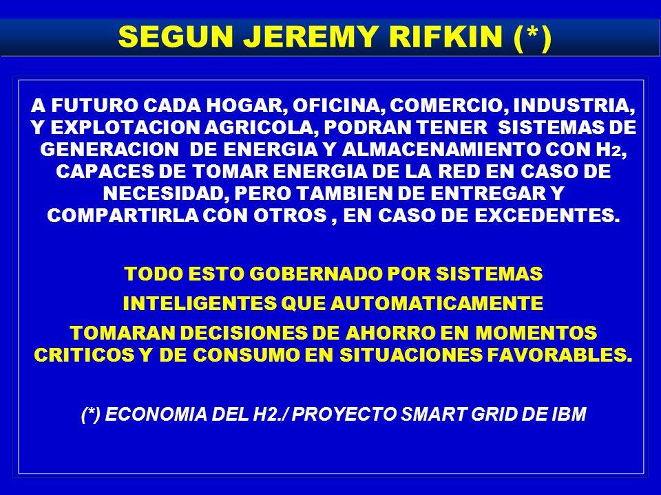 SEGUN JEREMY RIFKIN (*)