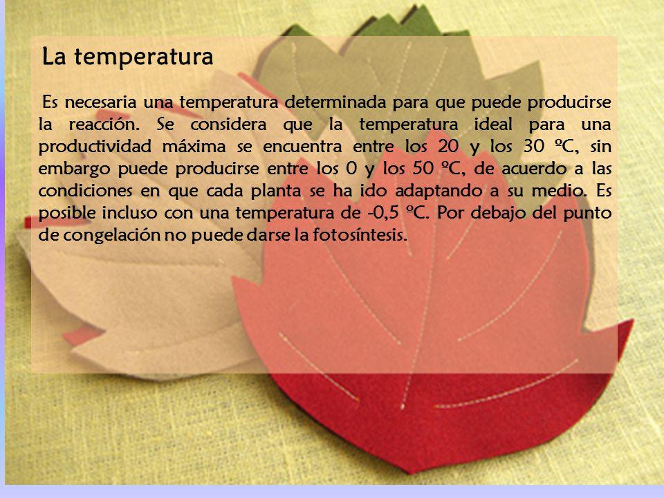 La temperatura
