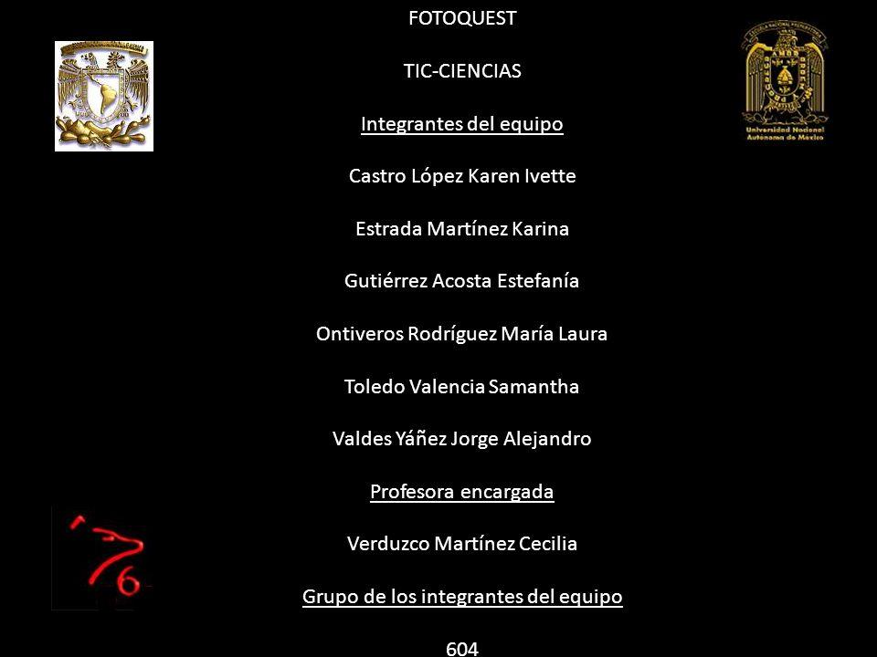 Integrantes del equipo Castro López Karen Ivette