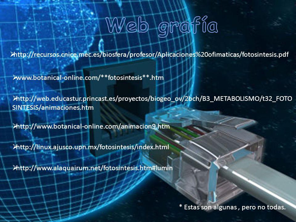 Web grafía http://recursos.cnice.mec.es/biosfera/profesor/Aplicaciones%20ofimaticas/fotosintesis.pdf.