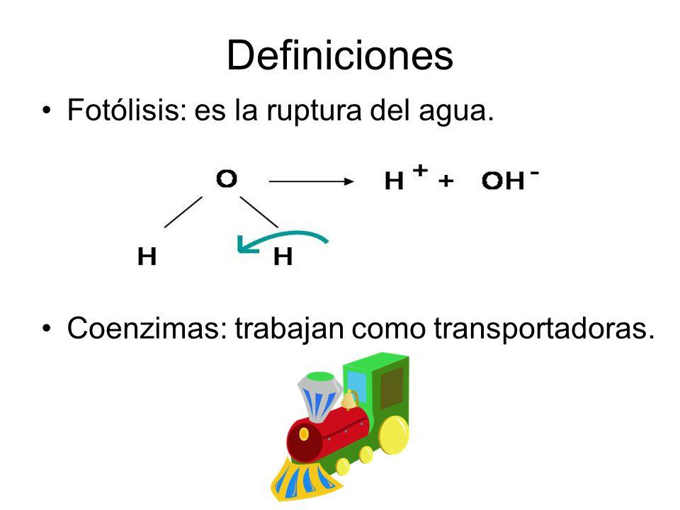 Definiciones Fotólisis: es la ruptura del agua.
