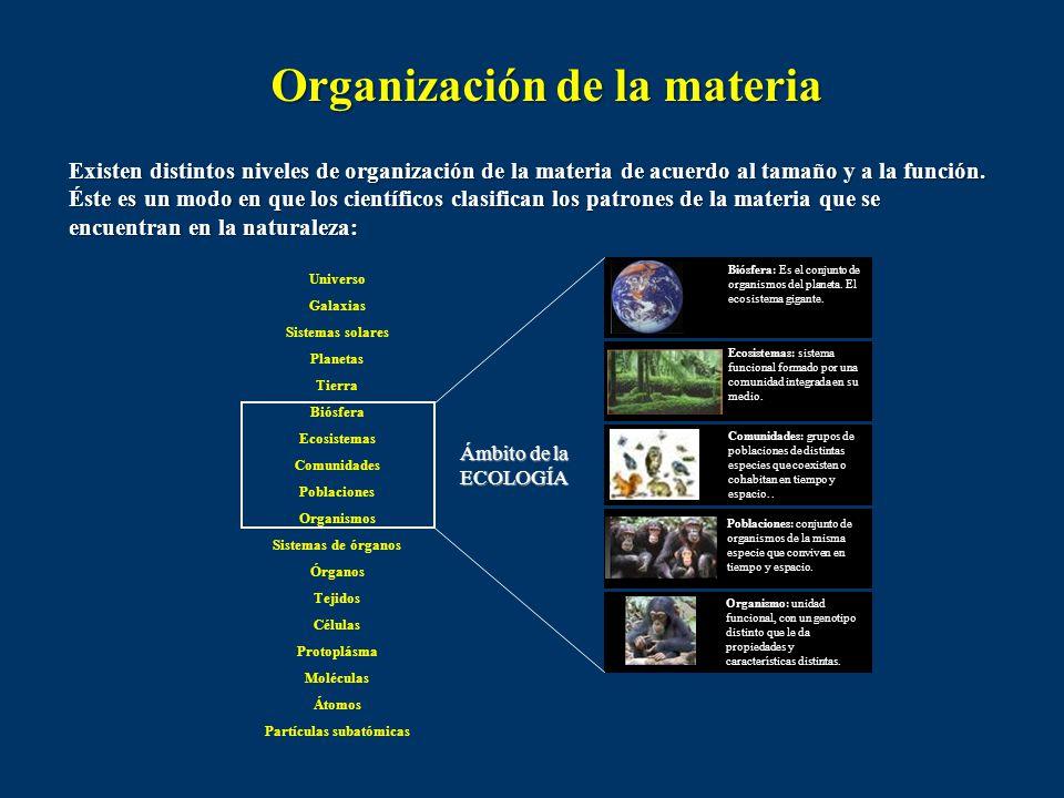 Organización de la materia Partículas subatómicas