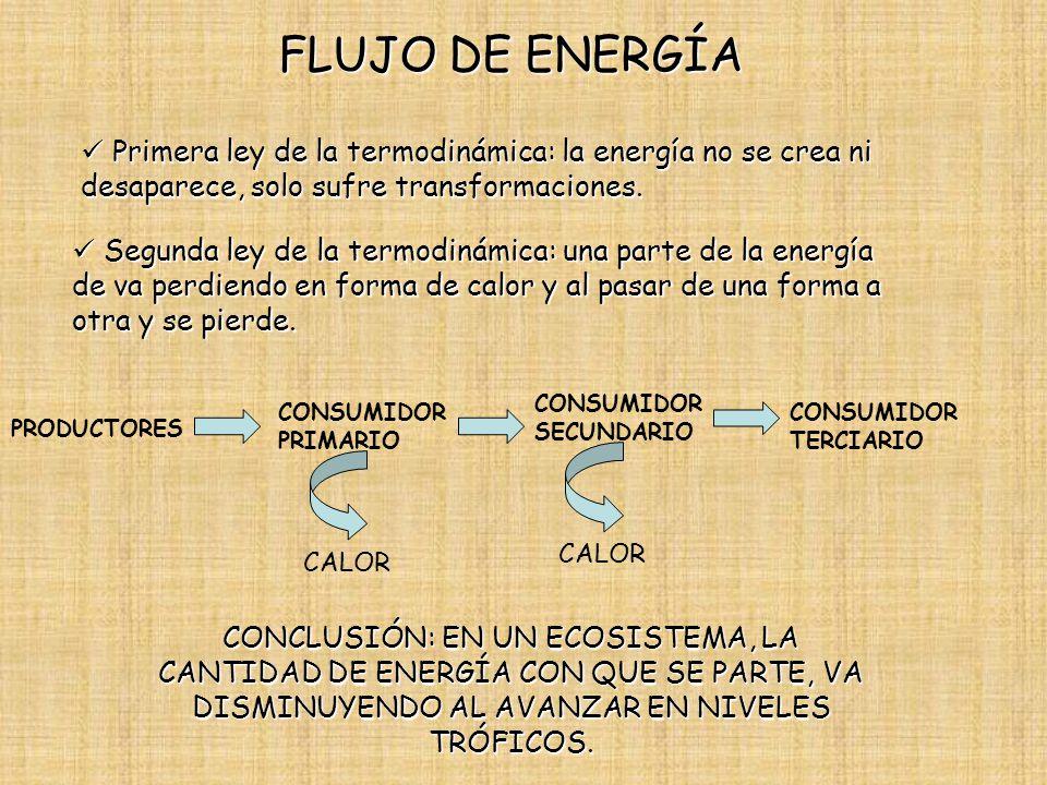 FLUJO DE ENERGÍA Primera ley de la termodinámica: la energía no se crea ni desaparece, solo sufre transformaciones.