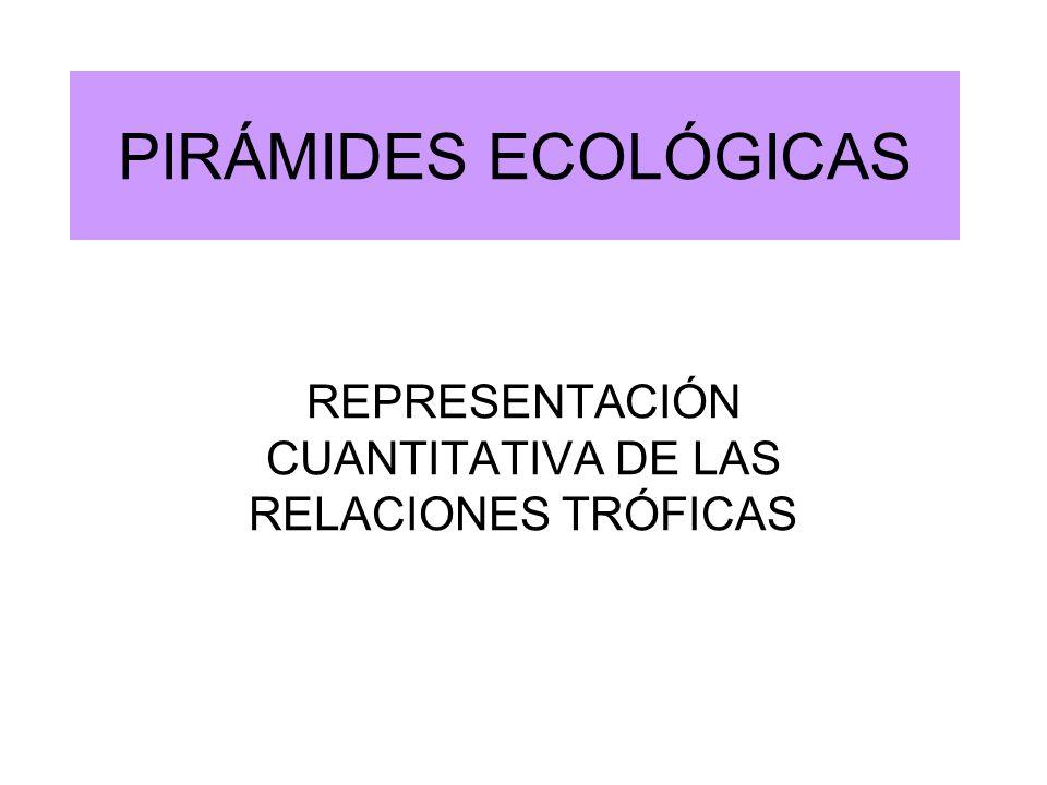 REPRESENTACIÓN CUANTITATIVA DE LAS RELACIONES TRÓFICAS