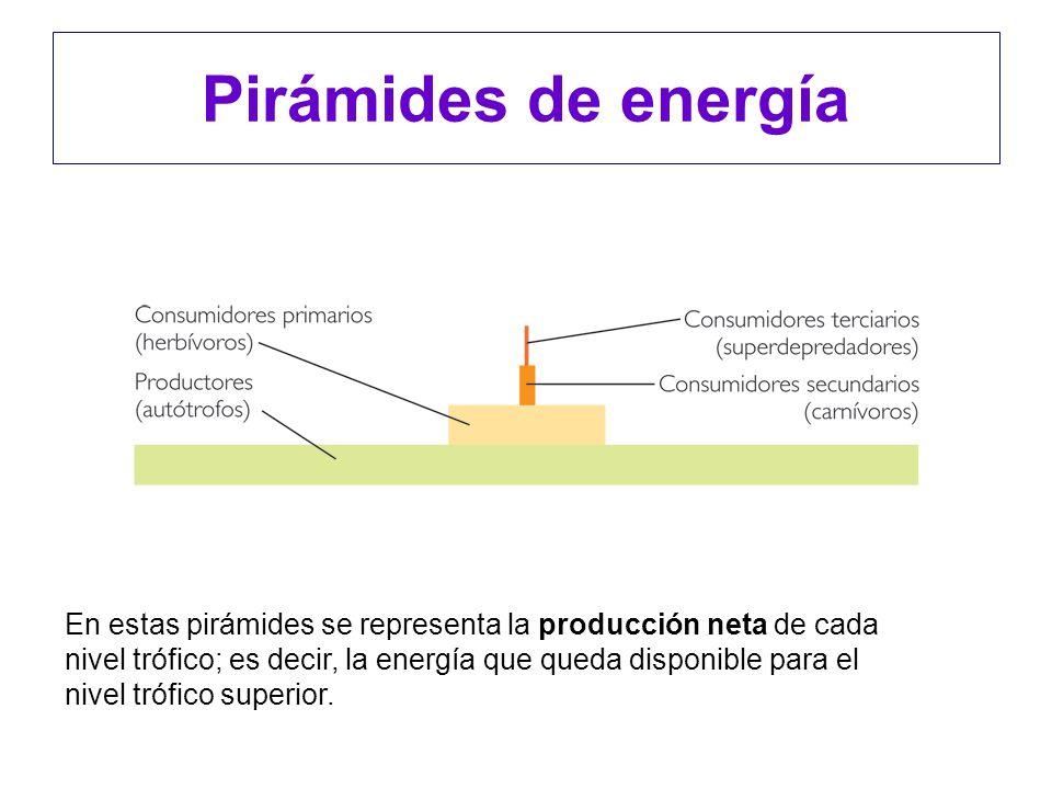 Pirámides de energía