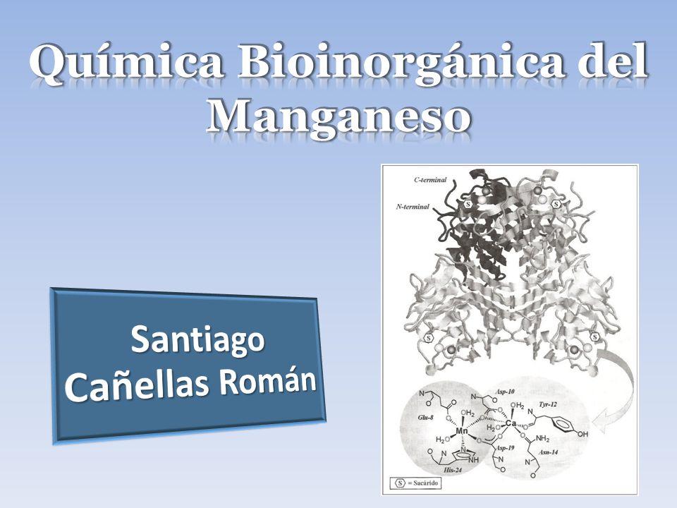 Química Bioinorgánica del Manganeso