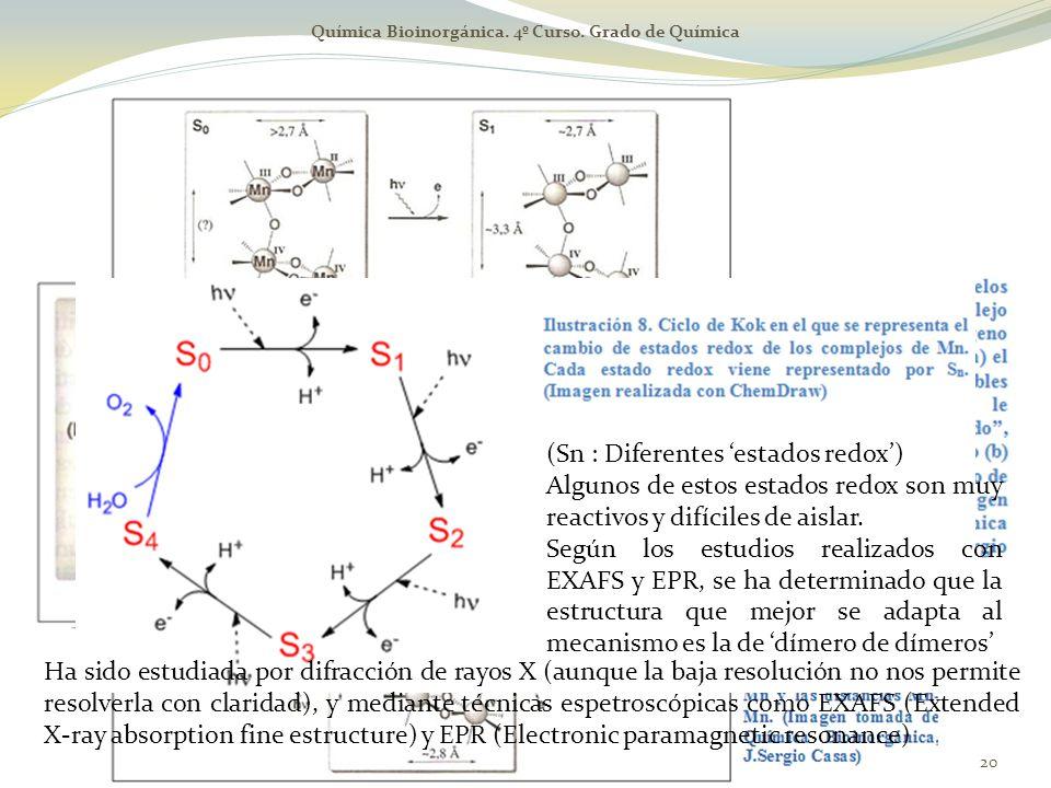 Química Bioinorgánica. 4º Curso. Grado de Química