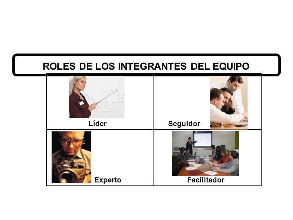 ROLES DE LOS INTEGRANTES DEL EQUIPO
