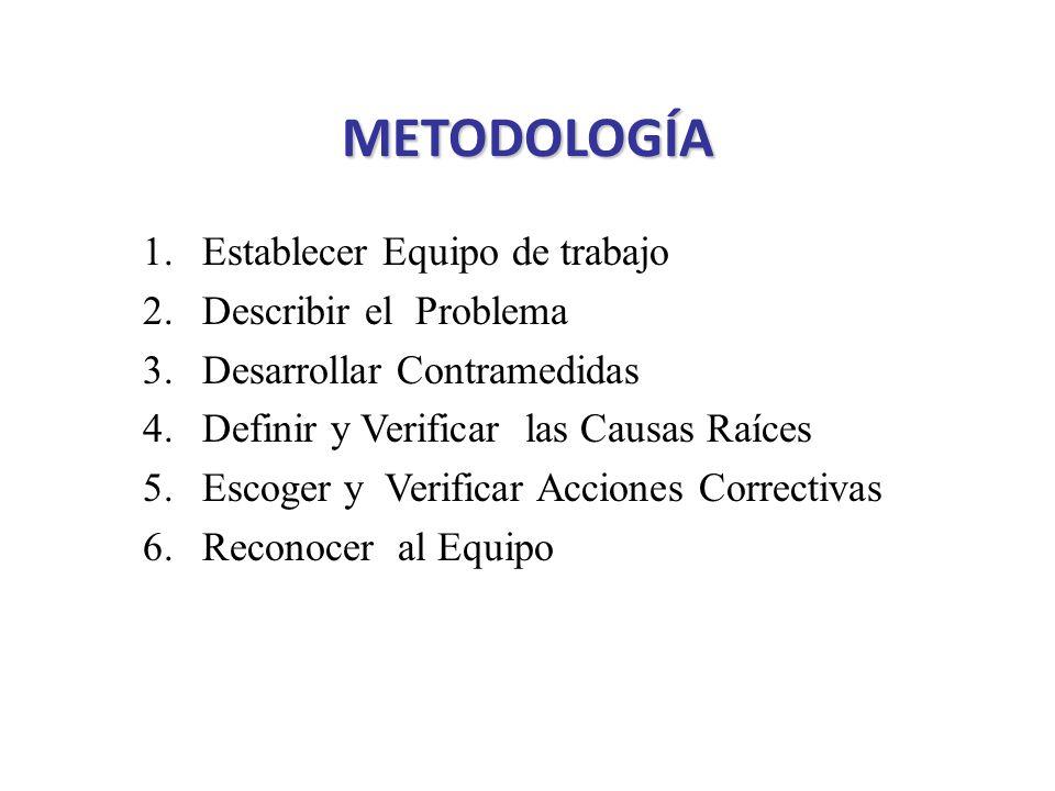 METODOLOGÍA Establecer Equipo de trabajo Describir el Problema