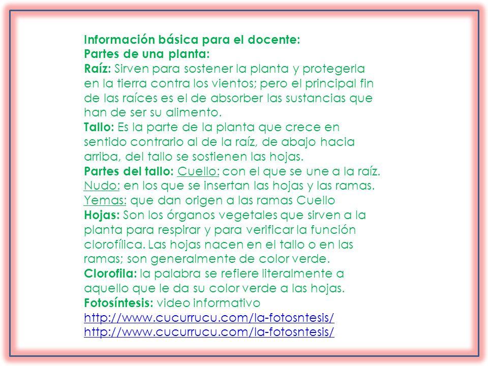 Información básica para el docente: