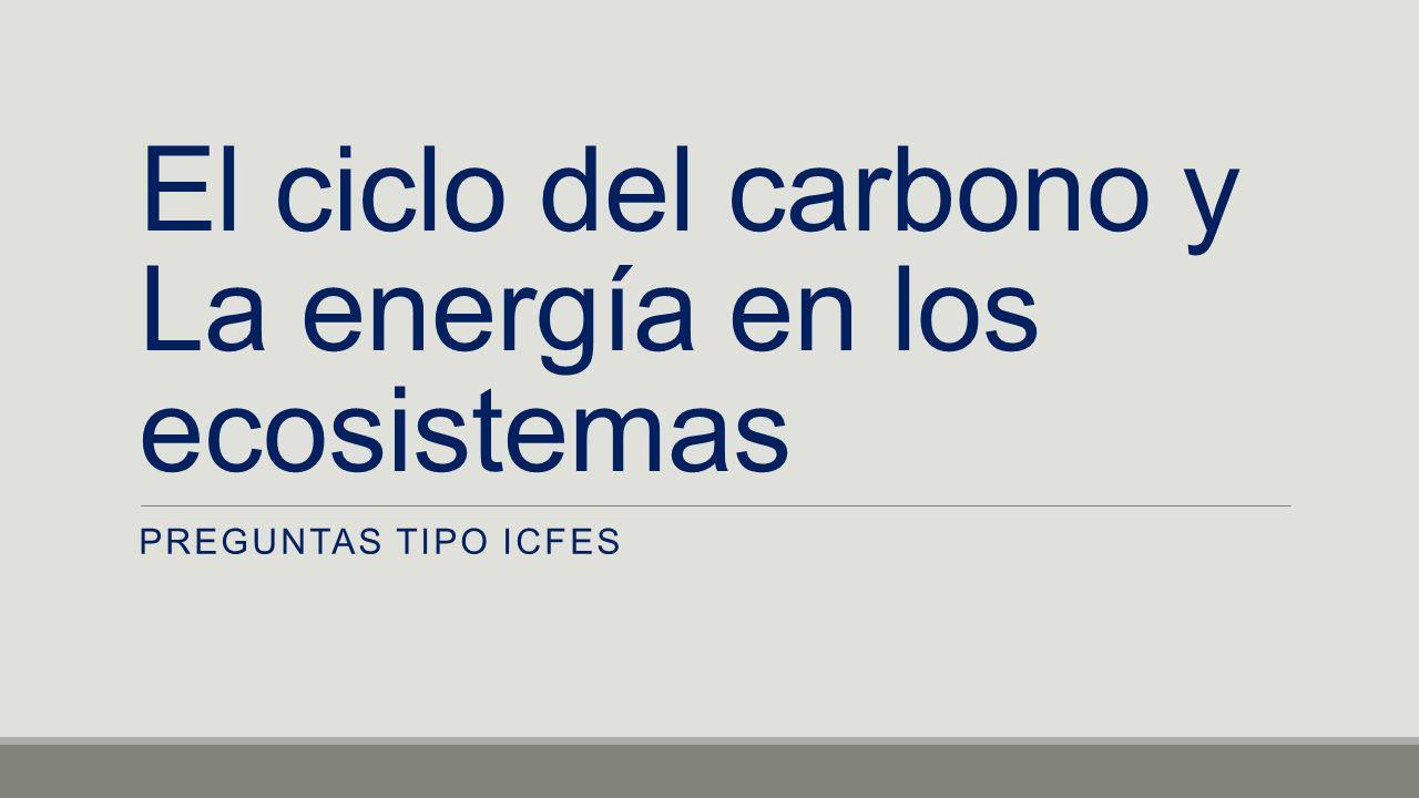 El ciclo del carbono y La energía en los ecosistemas